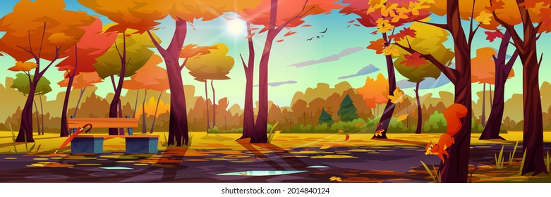 Autumn landscape background, fall park or forest panorama, wooden bench with umbrella, multicolor trees and blue sky with bright sun, rays through leaves. Squirrel on maple, foliage and water on roads