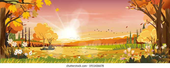 Autumn landscapes of Countryside in evening Sunset with Orange and Pink sky,Morning Mid autumn in farm field with mountain, wild grass and leaves falling in orange foliage. Wonderland in fall season