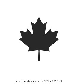 Autumn leaf canadian icon vector