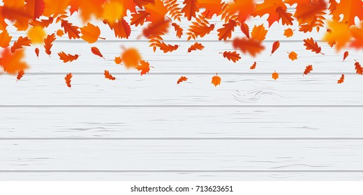 Autumn leaf fall or autumnal falling leaves on white wooden background. Vector orange foliage flying in wind motion blur. Maple, rowan or chestnut and poplar leaf pattern for autumn design