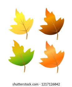 Autumn leaf set isolated vector,green,yellow,orange and brown color.