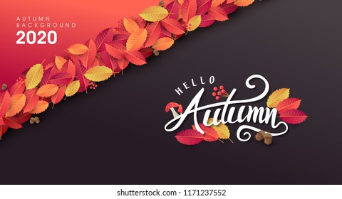 Autumn leaves background.thanksgiving day vector illustration