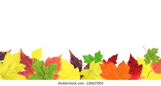 Autumn Leaves Border, Vector Illustration