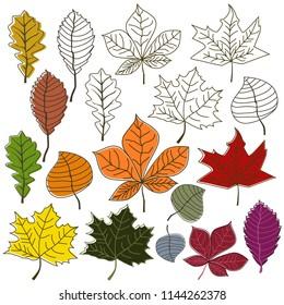 autumn leaves bush collection set