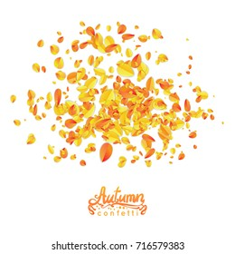 Autumn leaves confetti particles isolited in white background