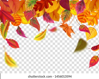 Autumn leaves fall. Falling blurred leaf, autumnal foliage fall and wind rises yellow leaves. Leaf decoration frame, september botanical header birch or october border isolated vector illustration