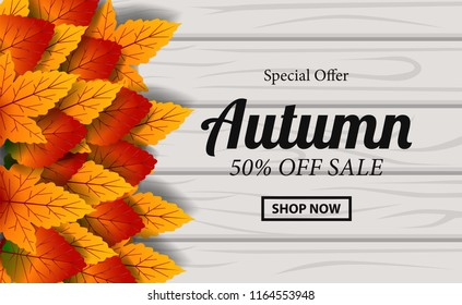 autumn leaves fall with wood background. sale discount template card. poster event template.. vector illustration.