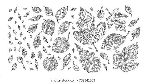Autumn leaves. Happy thanksgiving. Vector artwork. Black and white. Coloring book pages for adults and kids. Set collection. Bohemia concept for invitation, greeting card, boutique logo, label.