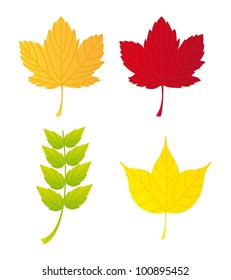 autumn leaves isolated over white background. vector illustration
