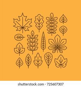 Autumn leaves line icons set isolated on orange background. Tree leaf logo, symbol. Fall design element.