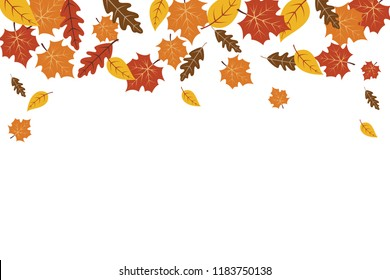 Autumn leaves maple leaf background. Autumn background vector illustration. Leaves vector