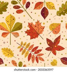 Autumn leaves pattern. Falling leaf seamless background with Oak, maple, chestnut, linden, aspen, walnut and rowan foliage in cartoon style.