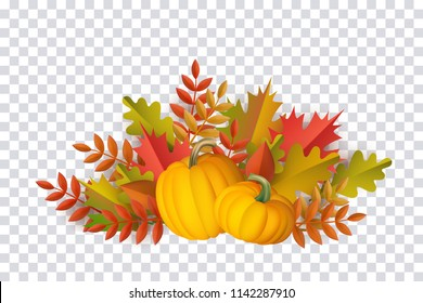 Autumn leaves and pumpkins pattern on transparent background. Seasonal floral maple oak tree orange leaves with gourds for thanksgiving holiday, harvest decoration vector design.