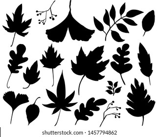 Autumn leaves set. Black leaf silhouettes isolated on white background. Graphic elements for autumn designs
