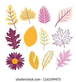 Autumn leaves set - vector flat design set