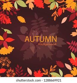 autumn leaves stylized background, autumn seasonal banner template