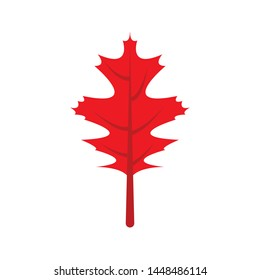 Autumn leaves symbol cartoon isolated vector illustration graphic design