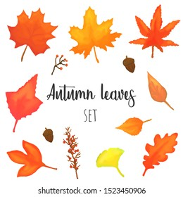 Autumn leaves vector set, isolated fall colored design elements.