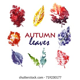 autumn leaves. Watercolor. Hand drawn