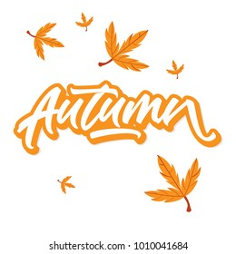 Autumn Lettering With Leaf