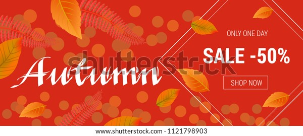 Autumn lettering for shopping banner. Only one day sale fifty percent Shop now lettering in rhombus on orange background. Illustration with lettering can be used for announcement, posters and leaflets