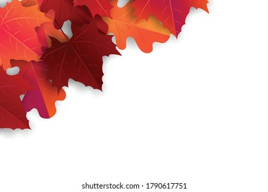Autumn maple leaves background. Fall banner template. Red and orange foliage. Thanksgiving season holiday concept. Realistic 3d vector illustration.