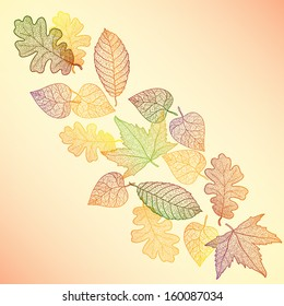 Autumn maple and oak leaves pattern background. Colored art vector autumn leaves pattern. Fabric texture.