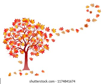Autumn Maple Tree With Falling Leaves isolated on White Background.  Elegant Design with Text Space. Vector and raster format available.