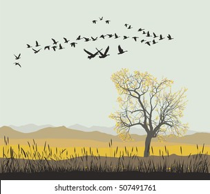 Autumn migration of wild geese