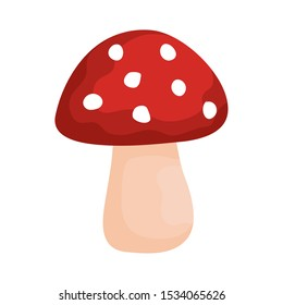 autumn mushroom exotic isolated icon vector illustration design