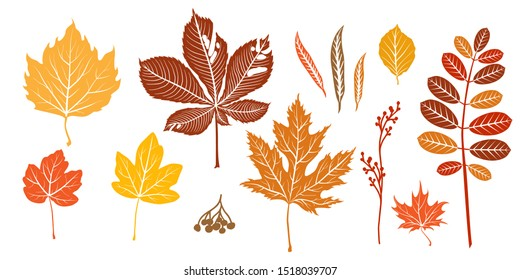 Autumn orange leaves silhouette isolated.