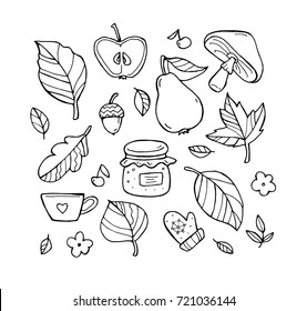 Autumn pattern. Harvest. Fruit, berries, leaves. Happy thanksgiving day. Set collection. Vector artwork. Black and white, monochrome. Coloring book page for adult. Banner, print. Zentangle doodle icon