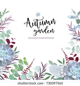 Autumn plants vector design frame arranged from eucalyptus, agonis, echeveria succulent, silverberry leaf, brunia berries, mixed herbs. Banner or border. All leaves are not cut. Isolated and editable