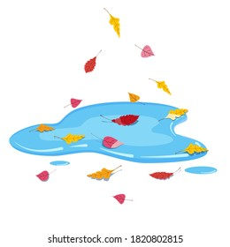 Autumn puddle with falling colorful leaves. Vector illustration