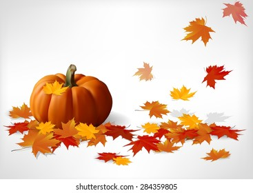 Autumn and pumpkins white background. Vector