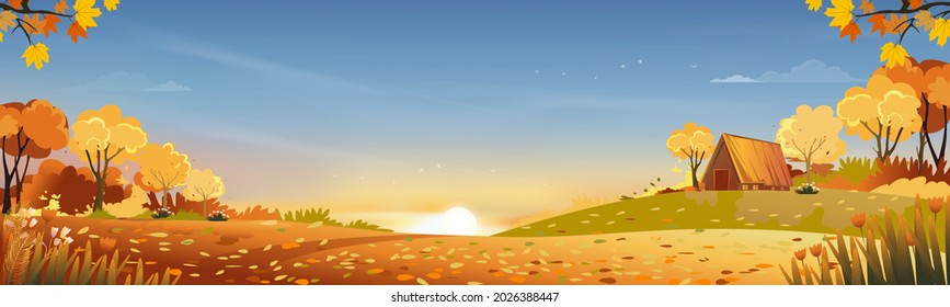 Autumn rural landscape in evening light with sunset, blue and orange sky background,Vector Cartoon fall season at countryside with forest tree and grass field with sunrise,Backdrop natural banner