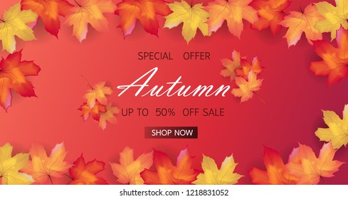 Autumn sale background layout decorate with maple leaves of autumn for shopping sale or promo poster and frame leaflet or web banner. Thanksgiving Background Vector illustration template.