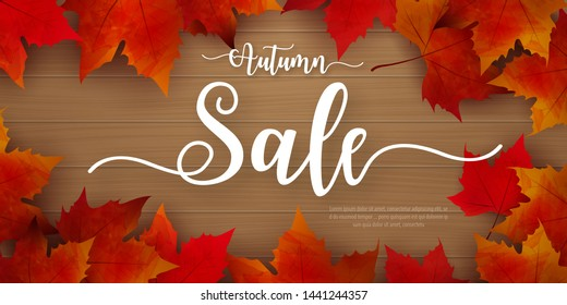 Autumn sale background layout decorate with leaves for shopping. Sale colorful seasonal fall leaves in orange background template for shopping discount, promotion, poster, frame, leaflet, web banner.