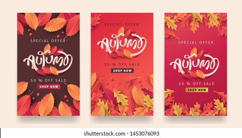 Autumn sale background layout decorate with leaves for shopping sale or promo poster and frame leaflet or web banner.Vector illustration template.
