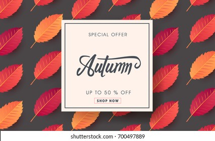 Autumn sale background layout decorate with autumn leaves for shopping sale or promo poster and frame leaflet or web banner.Vector illustration template.