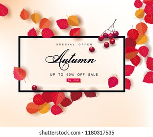 Autumn sale background template. Layouts for shopping sale or promo poster and frame leaflet or web banner