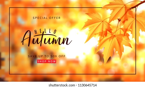 Autumn sale background template. Vector illustration with autumn landscape and calligraphy lettering. Maple branch on the blurred nature bokeh background.