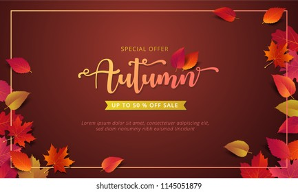 Autumn sale banner layout template decorate with maple and realistic leaves in warm color tone for shopping sale or promotion poster, leaflet and web banner. Vector illustration .