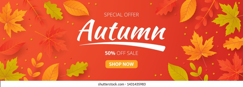 Autumn sale banner with leaves. Can be used for shopping sale, promo poster, banner, flyer, invitation, website or greeting card. Vector illustration