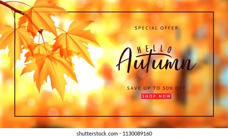 Autumn sale banner template. Vector illustration with autumn landscape and calligraphy lettering. Maple branch on the blurred nature bokeh background.