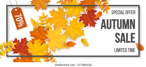 Autumn sale. Fallen maple leaves, frame and typographics. Background for invitation, discount offer or flyer. Realistic detailed vector template.