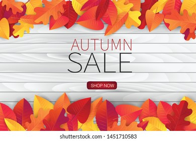 Autumn sale illustration with red and orange leaves on white wooden board background. Vector design for advertising, shopping, promo.