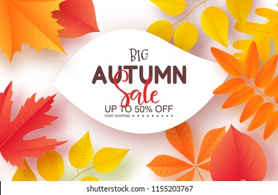 Autumn sale poster with colorful leaves . Vector illustration for banners, posters, email and newsletter designs, ads, coupons, promotional material.