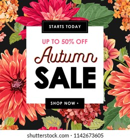 Autumn Sale Tropical Banner. Seasonal Promotion with Red Asters Flowers and Leaves. Floral Discount Template Design for Poster, Flyer, Gift Certificate. Vector illustration