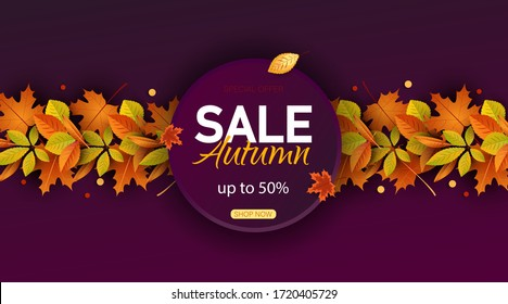 Autumn sale vector background. Autumn sale and discount text in red space with maple leaves in white textured background for fall season marketing promotion. Vector illustration Vertical view.
